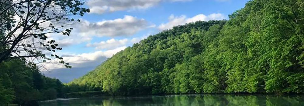 Visit the nature center, ride a paddle boat, or play disc golf at Bristol's most scenic park.