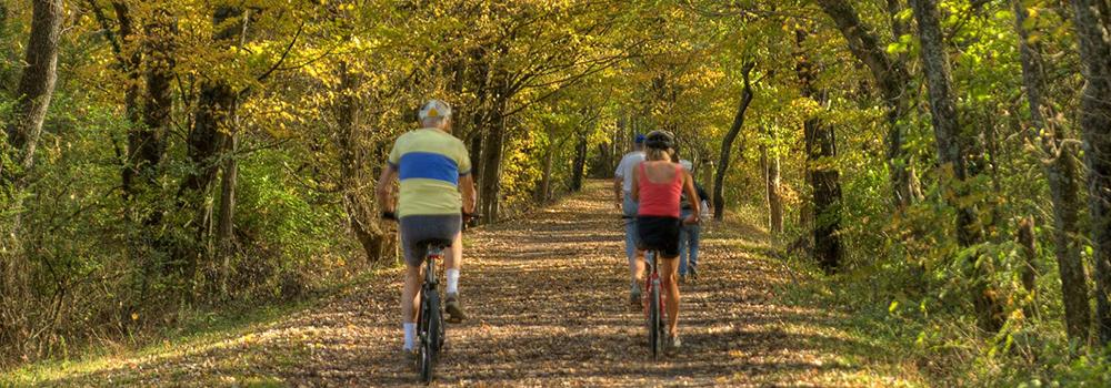 View the fall colors from the Virginia Creeper Trail in nearby Abingdon.