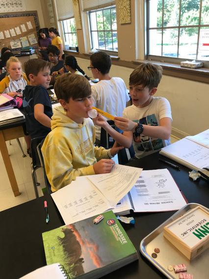 2019-2020 Seventh Grade Bubble Gum Lab