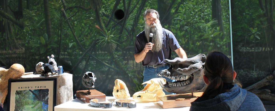 Dr. Wallace gave a presentation on the fossil history of tapirs at the Nashville Zoo that was open to the public. During the talk Wallace highlighted the Gray Fossil Site and the importance of its fossil tapirs for helping save living tapirs (all four species are endangered). The talk was part of the Zoo's 3rd annual Party for the Planet celebration.