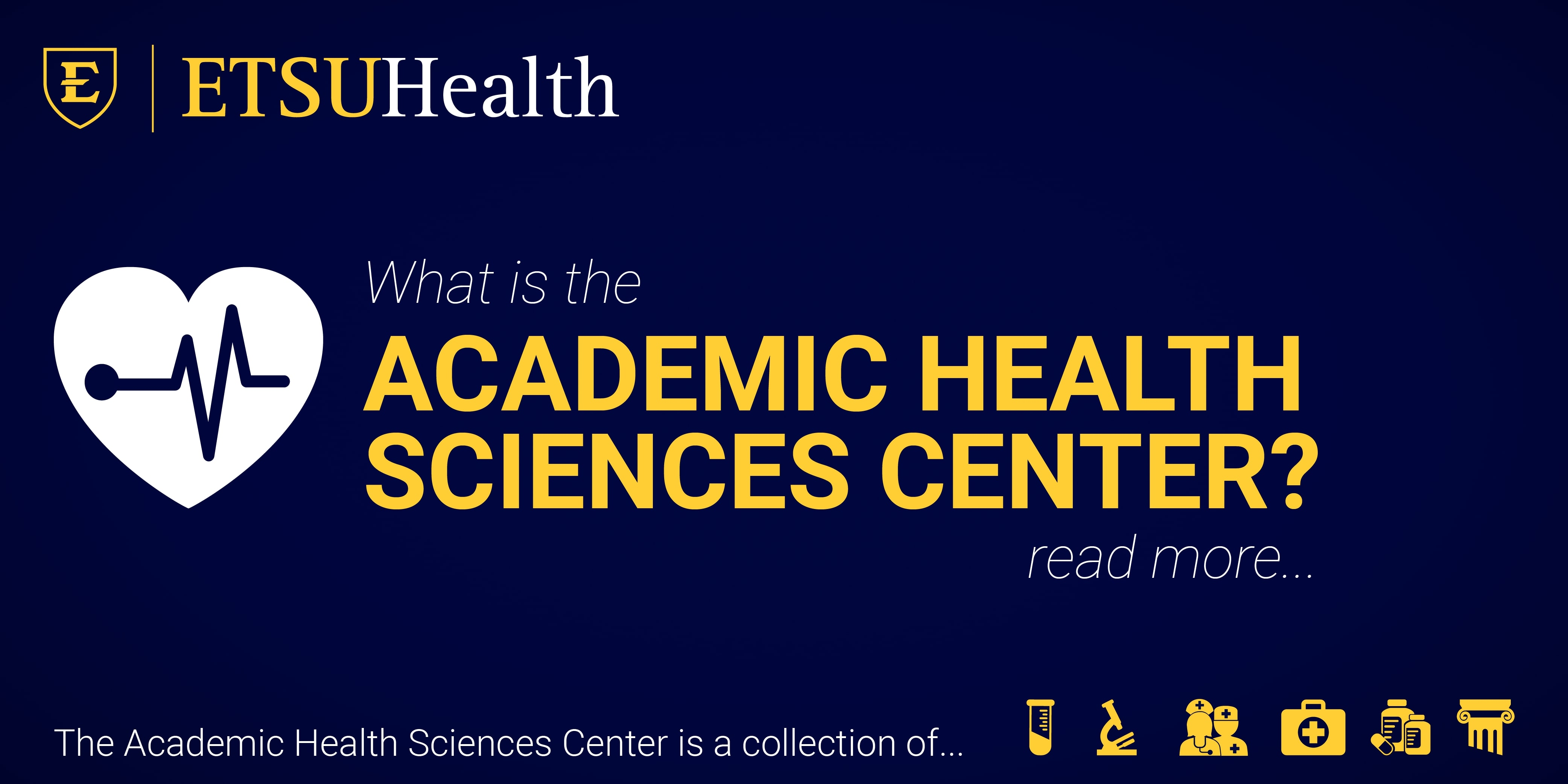 What is the Academic Health Sciences Center?