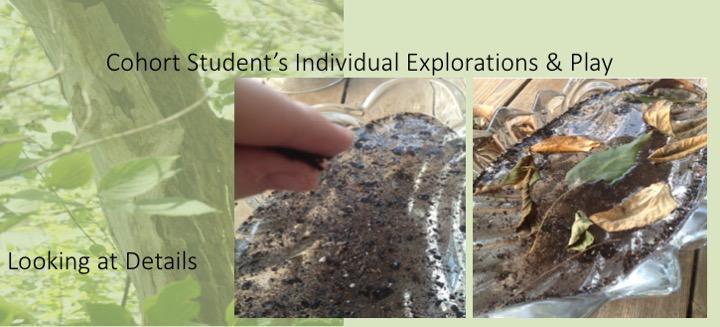 Cohort Student's Individual Explorations & Play