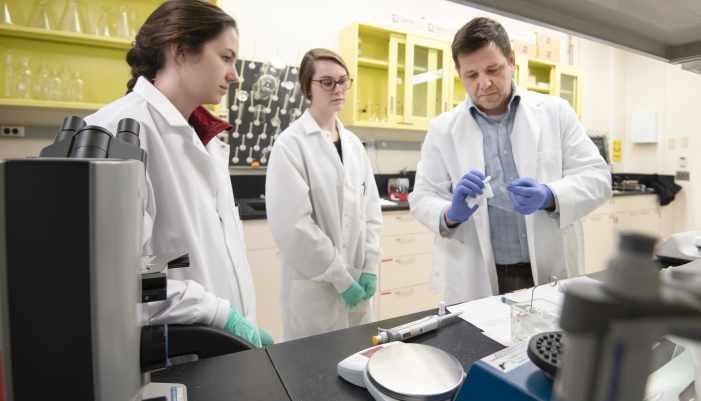 Polichnowski Receives Grant to Study Kidney Disease