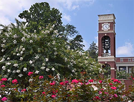 ETSU Carillon in the spring