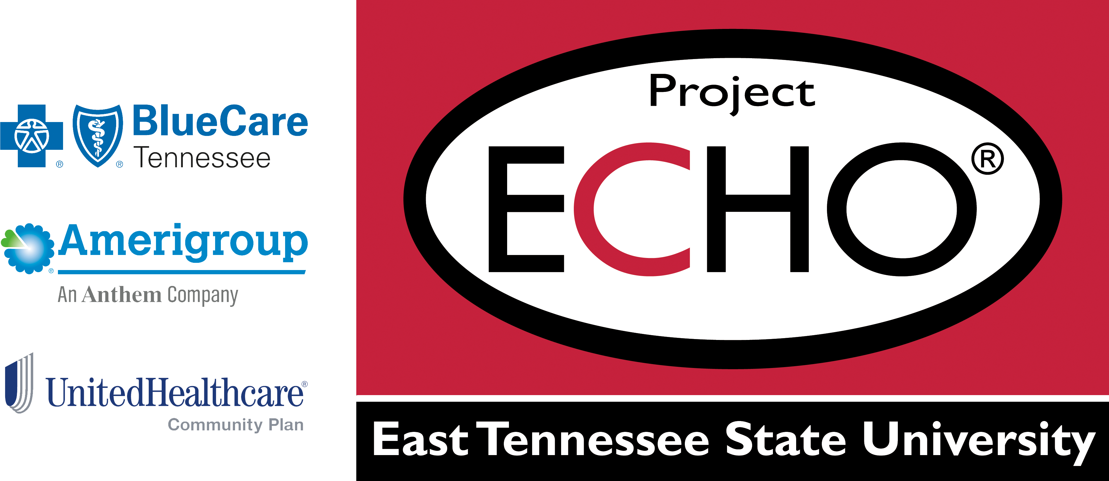 BMAT Project ECHO Banner