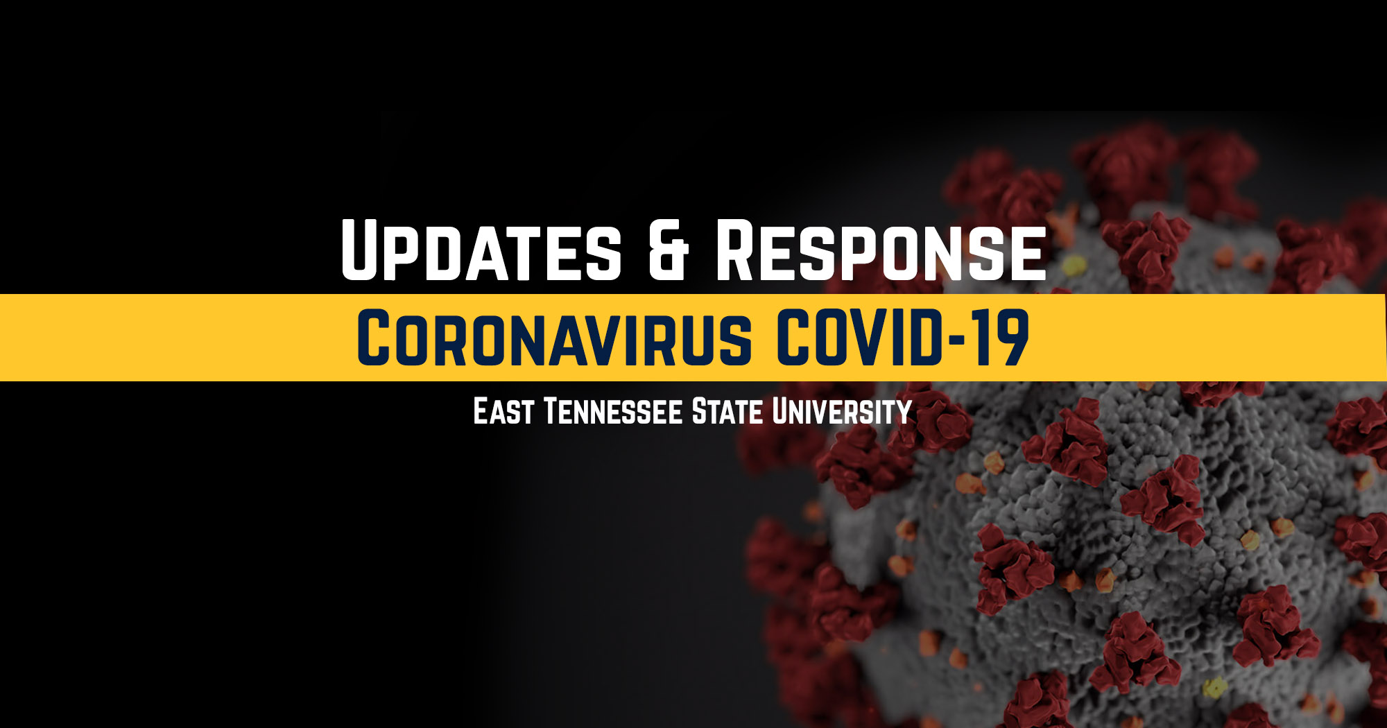 decorative image for ETSU Responds to Coronavirus