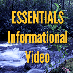 ESSENTIALS Video