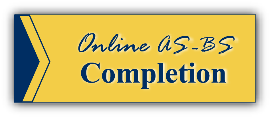 online A S to B S completion
