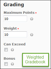 Image of the grading options for a grade item within a weighted gradebook (Maximum points, weight, can exceed, and bonus).
