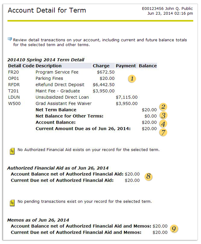 Account Details for Term