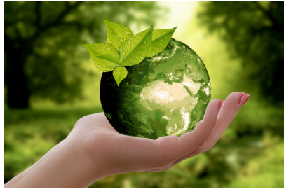 decorative image for Environmental Well-Being